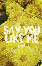 Say you like me by ValeVldz