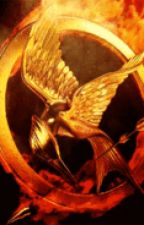 Wings of Fire Hunger Games by _Darkstalker_
