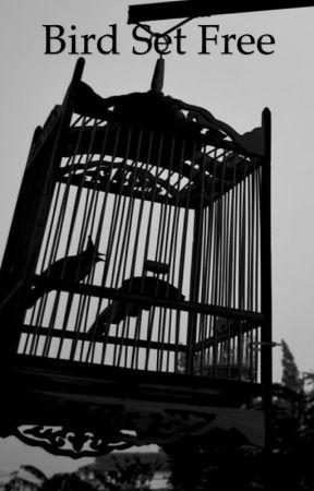Bird Set Free by sshannonh