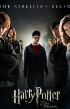 Гарри Поттер и Дары Смерти. Часть 2 by Vovan14