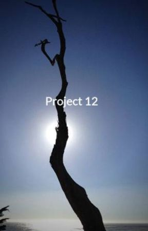 Project 12 by zoggth