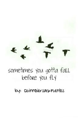SOMETIMES YOU GOTTA FALL BEFORE YOU FLY (KELLIN QUINN Y VIC FUENTES)