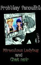 Problémy Fanoušků Miraculous Ladybug and Chat noir by Julinett13