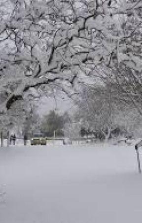 snow by advabz13