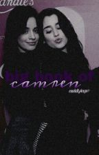 big book of camren.  by cuddlyings