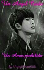 Un Angel Caído...  Un Amor Prohibido. (Jin & _ _ _ _ _)  [BTS] by UsagiChan666