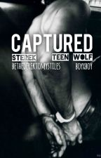 Captured - Sterek by BeTheDerekToMyStiles