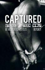 Captured - Sterek by BeTheSammyToMyDean