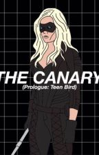 The Canary • arrow/TeenWolf by aestheticpale