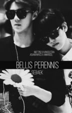 BELLIS PERENNIS || SEBAEK by hansolstan