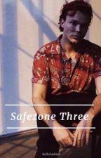 Safezone Three || Lashton✔ by kelliclashton