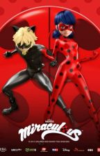 Miraculous Ladybug and Chat Noir by xLaraLemsx
