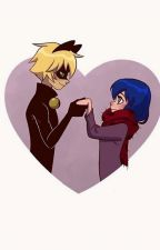 LADYBUG & CHAT NOIR by books_lover_s2s2