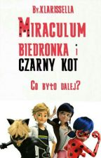 Miraculum Biedronka i Czarny Kot - Co było dalej? by klarissella