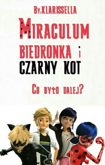 Miraculum Biedronka i Czarny Kot - Co było dalej?