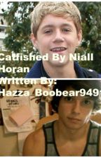 Catfished By Niall Horan(on hold) by beautifullarryx