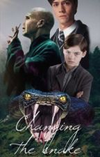 Changing the snake; Tom Riddle  by deaaa-inferni