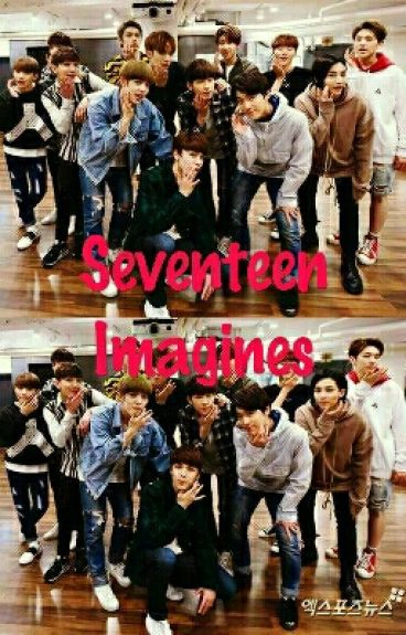 Seventeen X Reader