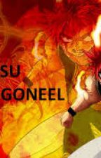 Fairy Tail: Information: Natsu Dragneel by basiati