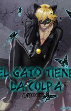 El Gato Tiene La Culpa -Chat Noir & Tu- by -Lexxi_