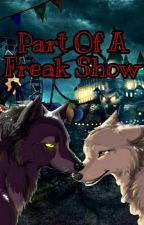 Werewolf reader X Boy || Part Of A Freak Show  by nightcoreheadphones