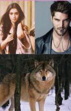 Compañera de un hombre lobo... by Stephanie2505