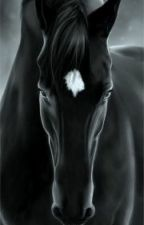 Лошадь, которая никогда не вернётся by nighty-cat