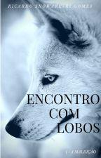 Encontro com Lobos - Livro I by RicardoGomes6