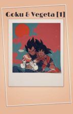 Goku & Vegeta [Temporada 1, Terminada] by Kiyoshi_77