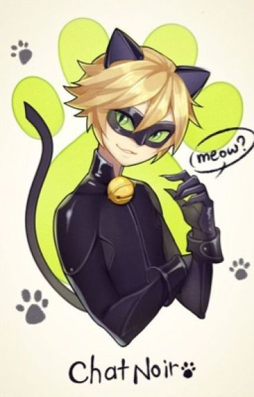 Falling for Agreste ~. Adrien/Chat Noir X Reader.~ |COMPLETED| (#Wattys 2016)