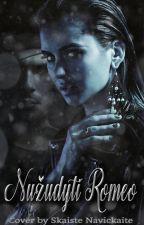 Nužudyti Romeo (Baigta) by DreamWalker_Kris