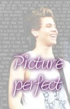 Picture Perfect - (A german Luke Hemmings Story) by zarrysluts
