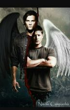 Kidnapped By Sam And Dean Winchester by winchester2003