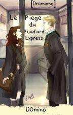 Le piège du Poudlard Express [ Dramione ] by D0mino