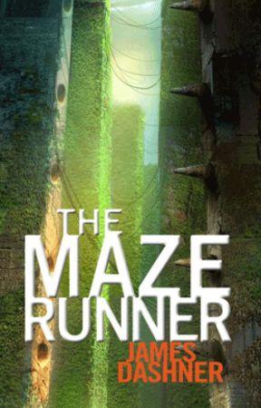 The Maze Runner by freakfromthattown