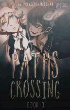 Paths Crossing (Book 3) by Princesshimechan