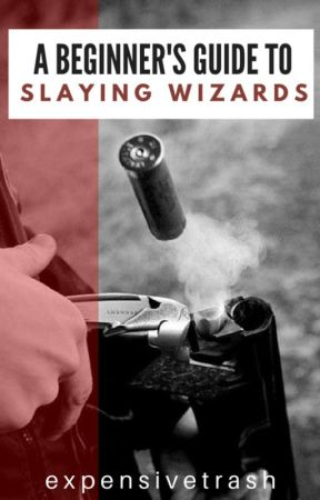 A Beginner's Guide to Slaying Wizards by Expensivetrash