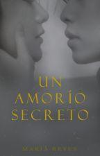 Un amorío secreto by Itsmaryreyes