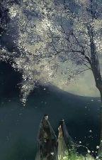 Búp bê tướng công - Lưu Vân (H) by Poisonic