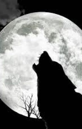 Twilight saga Embry Fanfiction by Katzz2