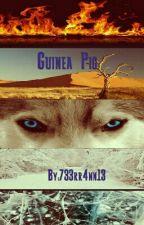 Guinea Pig by 733rr4nn13