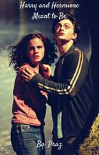 Harry and Hermione: Meant to Be by Praz234
