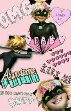 Miraculous Ladybug Memes  by Rocio_MIS