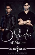 Fifty Shades of Malec by anyaswanson