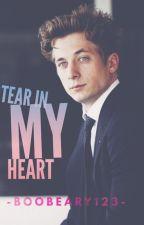 Tear In My Heart▷ Lip Gallagher by BooBeary123