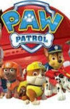 Ask Or Dare...Paw Patrol  by kahootduh