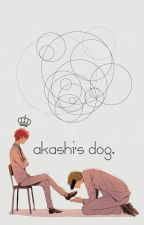 Akashi's dog. by KusoRyouta