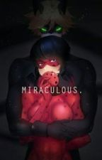 Miraculous: Tales of Ladybug and Chat Noir by sssssssaaaaa