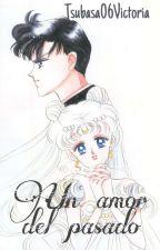 Un Amor del Pasado.(Antes De Sailor Moon) by Michelle06Victoria23