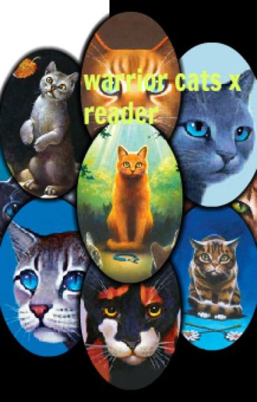 warrior cats x reader!